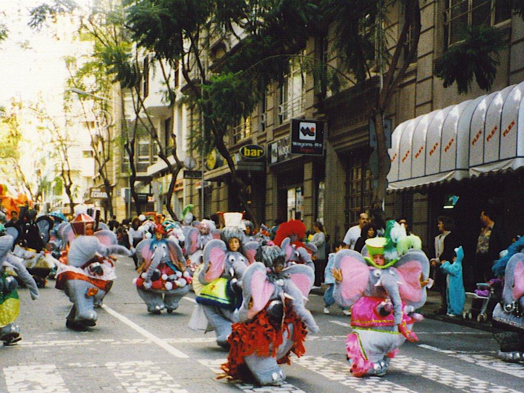 carnaval-santa-cruz